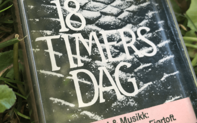 18 timers dag poster